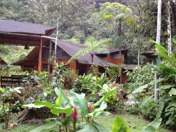 Hospedagem MIndo garndes: um resort no meio da mato. Em qualquer outro lugar, seria uma fortuna. Mas isso é Equador, então, já sabem... bom pra gente!