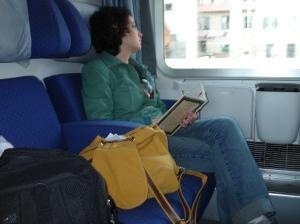 Vendo a paisagem passar em um trem pela Europa...