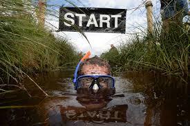Bog snorkelling4