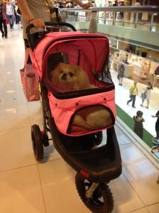 Essa é super fashion, carrinho rosa e tudo combinando