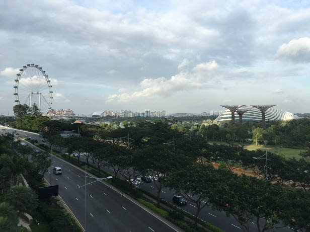 Roda gigante Singapura.jpg